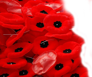 REMEMBRANCE DAY | NOV 11
